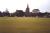 thumb_cricket_img